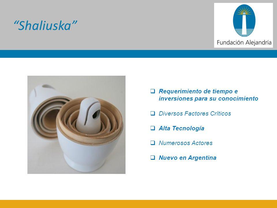 Requerimiento de tiempo e inversiones para su conocimiento Diversos Factores Críticos Alta Tecnología Numerosos Actores Nuevo en Argentina Shaliuska