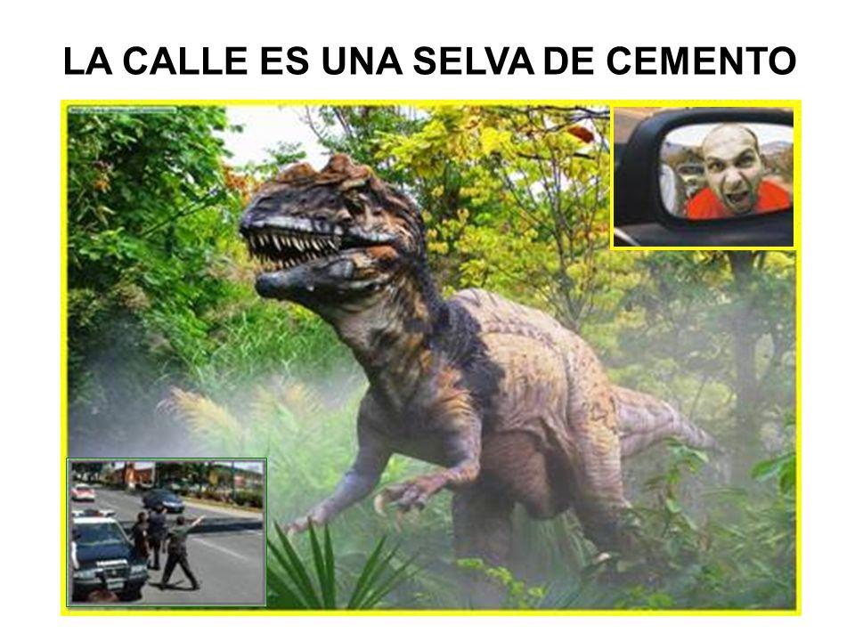 NO INVADIR EL CARRIL CONTRARIO