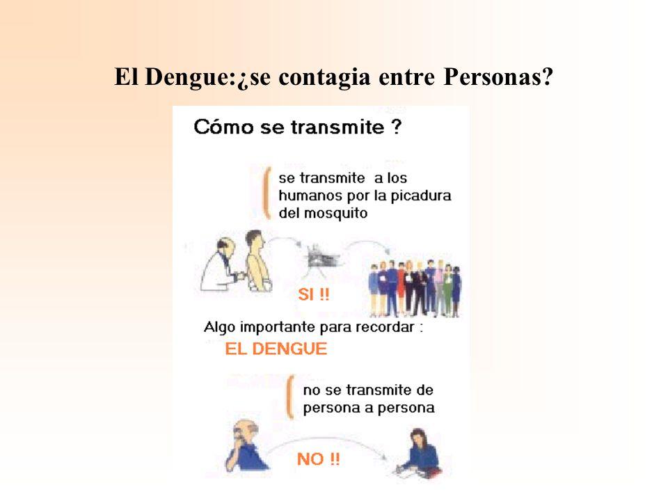 El Dengue:¿se contagia entre Personas?