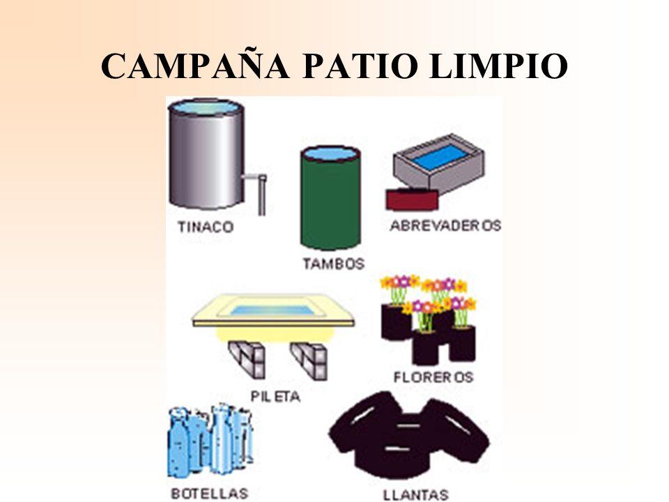 CAMPAÑA PATIO LIMPIO