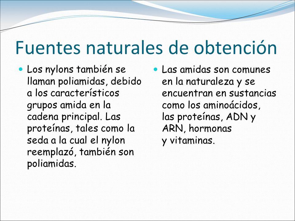 Fuentes naturales de obtención Los nylons también se llaman poliamidas, debido a los característicos grupos amida en la cadena principal. Las proteína