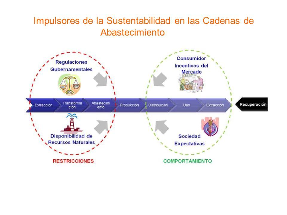 Impulsores de la Sustentabilidad en las Cadenas de Abastecimiento