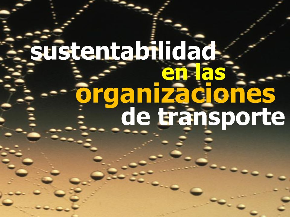 sustentabilidad en las organizaciones de transporte