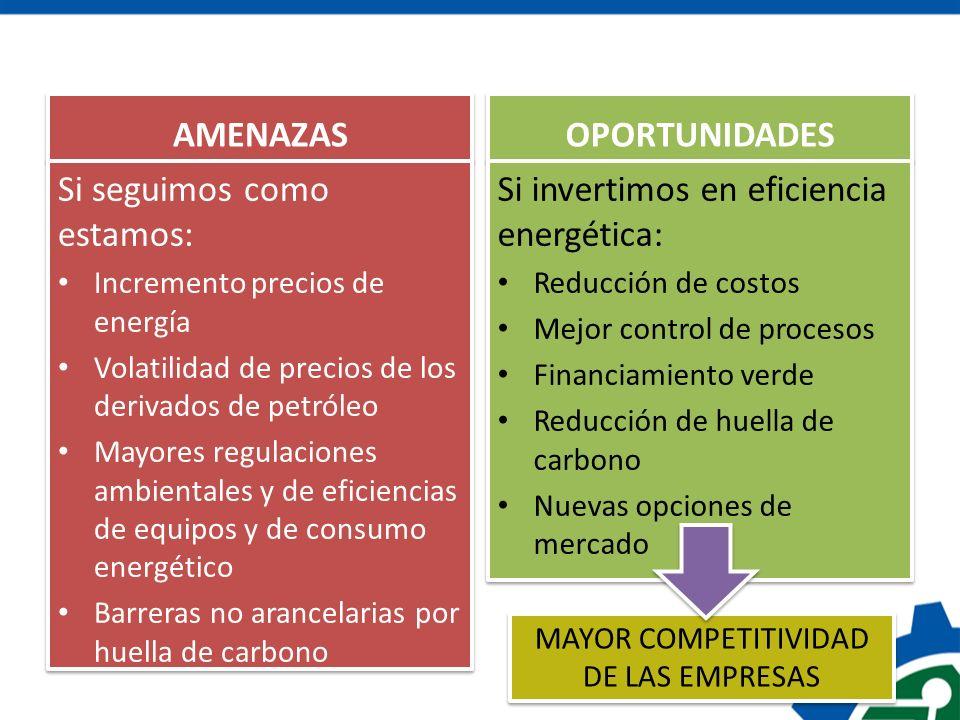AMENAZAS Si seguimos como estamos: Incremento precios de energía Volatilidad de precios de los derivados de petróleo Mayores regulaciones ambientales