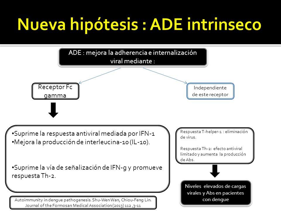 ADE : mejora la adherencia e internalización viral mediante : Receptor Fc gamma Independiente de este receptor Suprime la respuesta antiviral mediada