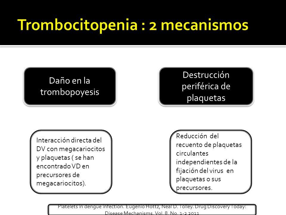 Daño en la trombopoyesis Destrucción periférica de plaquetas Interacción directa del DV con megacariocitos y plaquetas ( se han encontrado VD en precu