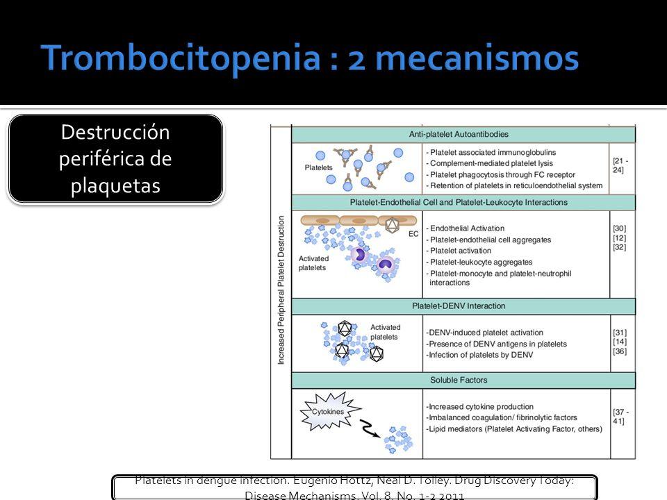 Destrucción periférica de plaquetas Platelets in dengue infection. Eugenio Hottz, Neal D. Tolley. Drug Discovery Today: Disease Mechanisms. Vol. 8, No