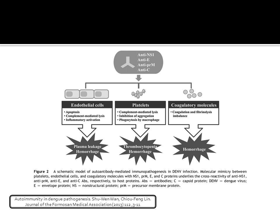 Autoimmunity in dengue pathogenesis. Shu-Wen Wan, Chiou-Feng Lin. Journal of the Formosan Medical Association (2013) 112,3-11