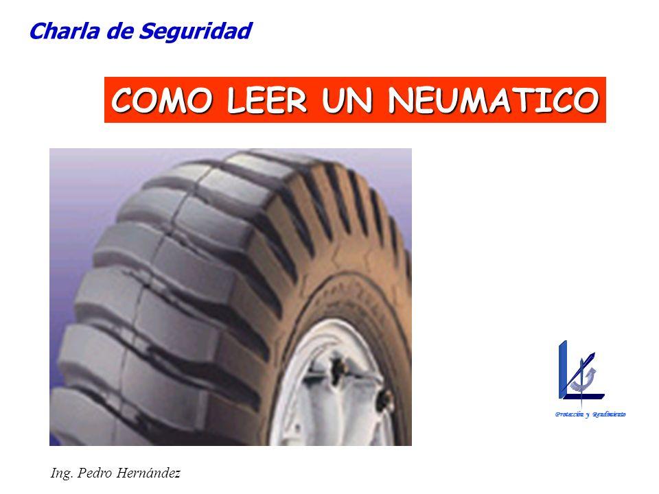 Ing. Pedro Hernández COMO LEER UN NEUMATICO Charla de Seguridad Protección y Rendimiento