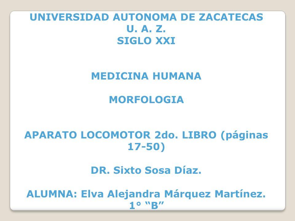 UNIVERSIDAD AUTONOMA DE ZACATECAS U. A. Z. SIGLO XXI MEDICINA HUMANA MORFOLOGIA APARATO LOCOMOTOR 2do. LIBRO (páginas 17-50) DR. Sixto Sosa Díaz. ALUM