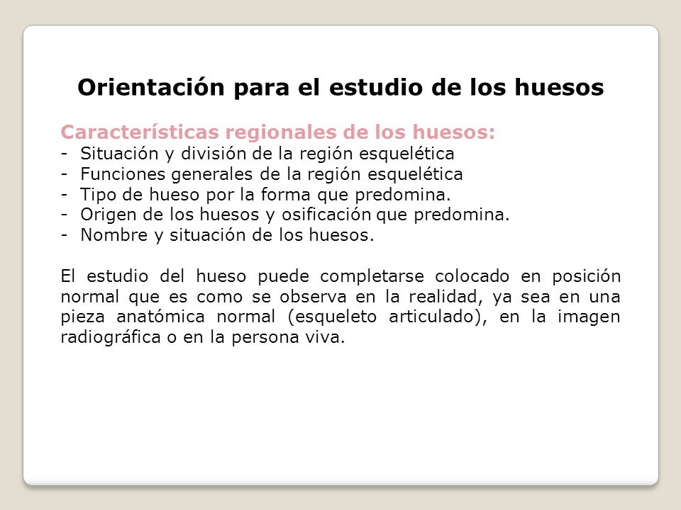Orientación para el estudio de los huesos Características regionales de los huesos: - Situación y división de la región esquelética - Funciones genera