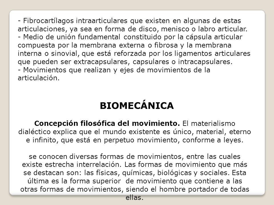 - Fibrocartílagos intraarticulares que existen en algunas de estas articulaciones, ya sea en forma de disco, menisco o labro articular. - Medio de uni