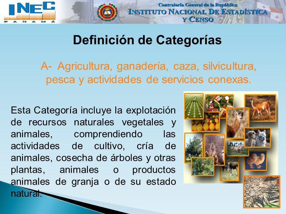 Definición de Categorías Esta Categoría incluye la explotación de recursos naturales vegetales y animales, comprendiendo las actividades de cultivo, c