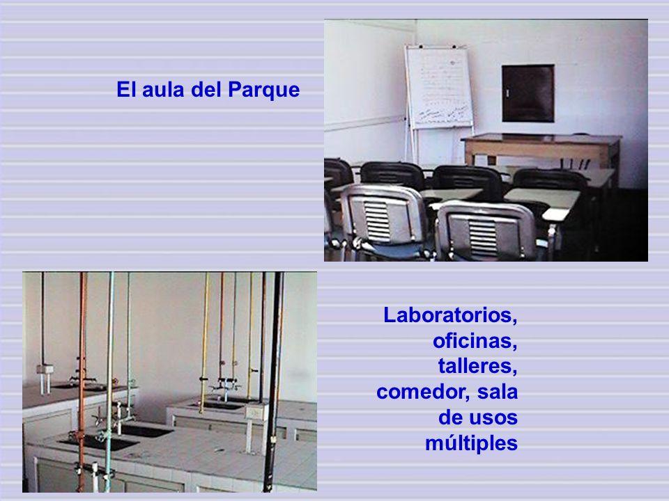 Laboratorios, oficinas, talleres, comedor, sala de usos múltiples El aula del Parque
