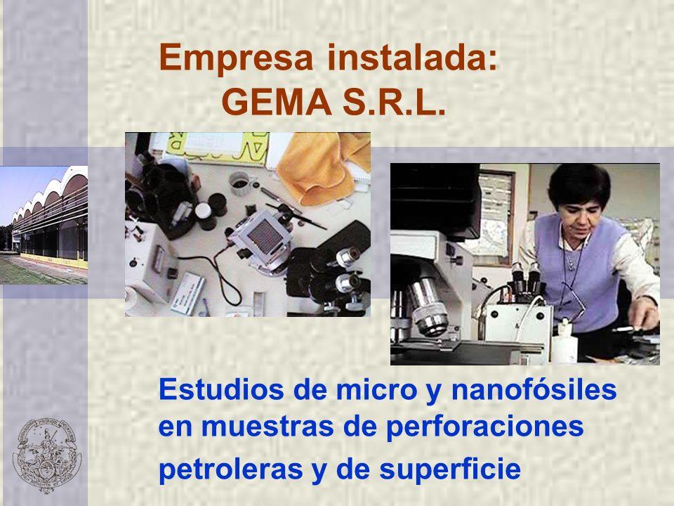 Empresa instalada: GEMA S.R.L. Estudios de micro y nanofósiles en muestras de perforaciones petroleras y de superficie