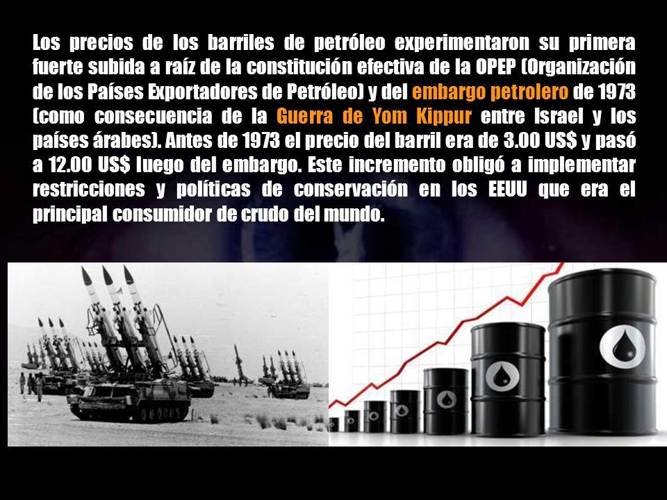 El precio del combustible al consumidor debería estar relacionado con el costo operativo del circuito de búsqueda, extracción, transporte, industriali