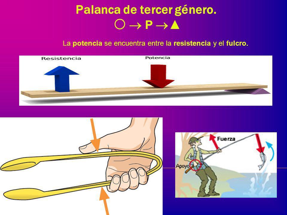 Palanca de segundo género. P la resistencia se encuentra entre la potencia y el fulcro