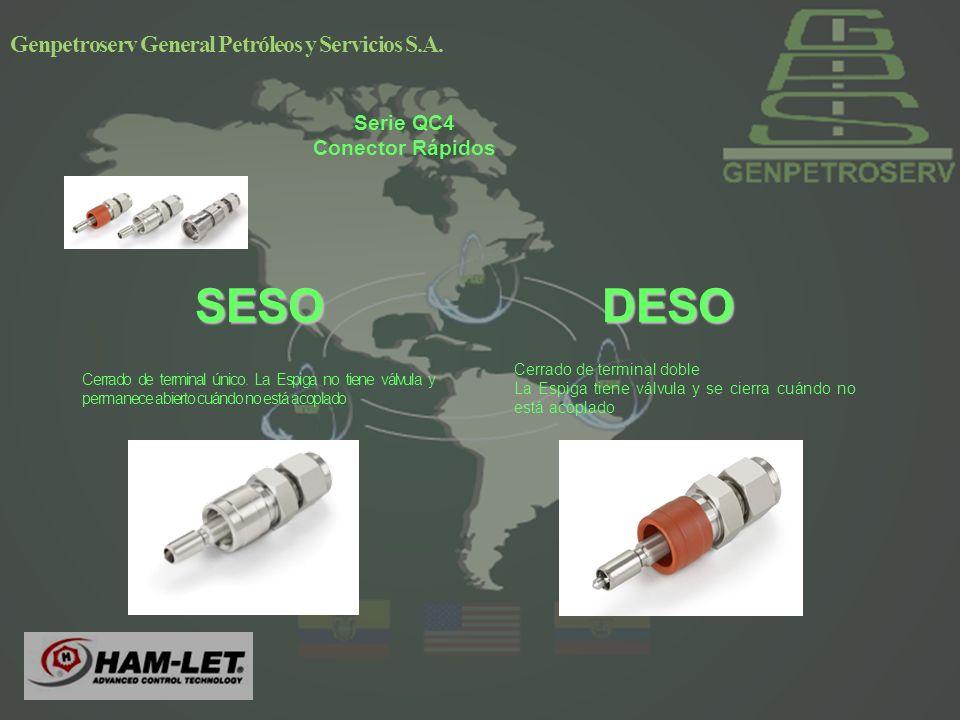 Genpetroserv General Petróleos y Servicios S.A.DESOSESO Cerrado de terminal único.