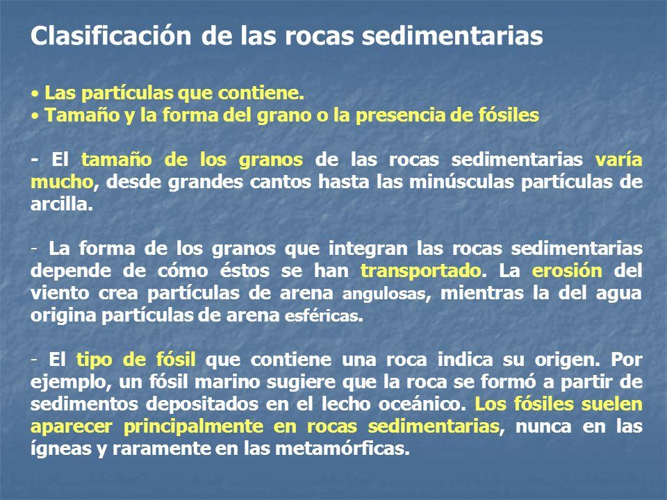 Clasificación de las rocas sedimentarias Las partículas que contiene. Tamaño y la forma del grano o la presencia de fósiles - El tamaño de los granos