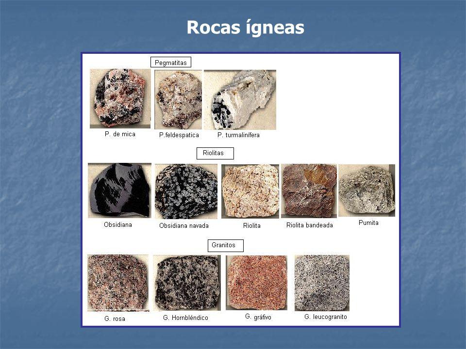 Rocas sedimentarias Se forman en la superficie terrestre o cerca de ella.
