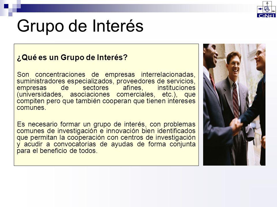 Grupo de Interés ¿Qué es un Grupo de Interés? Son concentraciones de empresas interrelacionadas, suministradores especializados, proveedores de servic