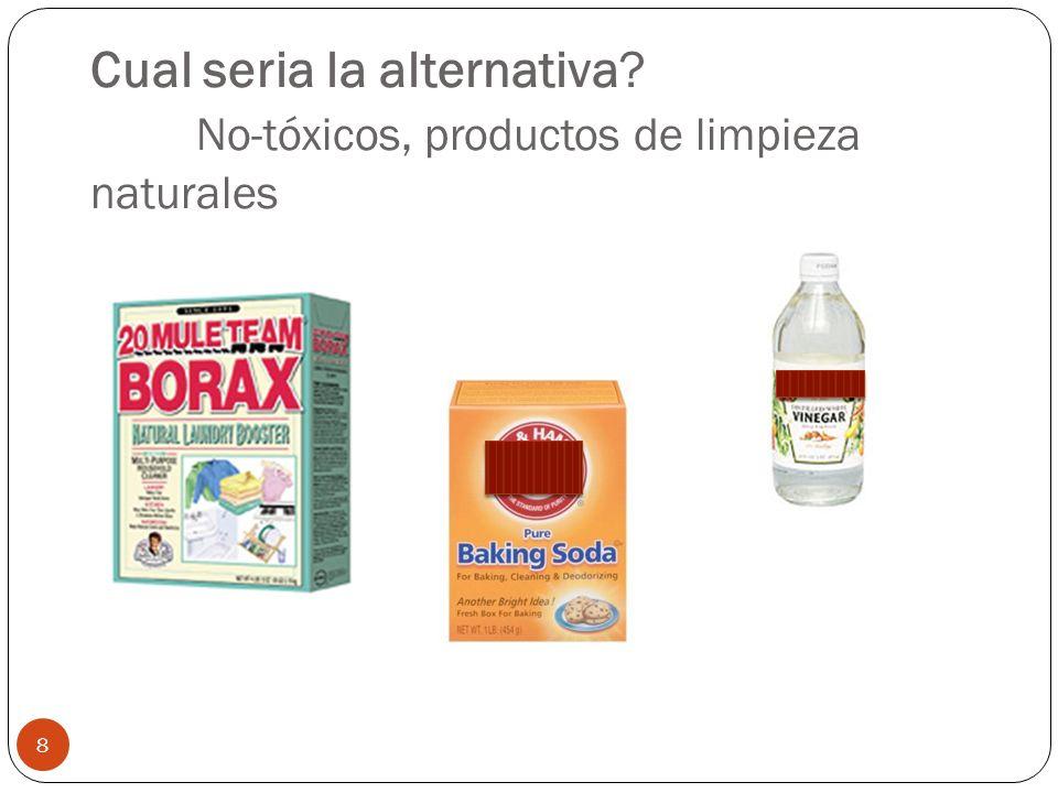 Cual seria la alternativa? No-tóxicos, productos de limpieza naturales 8