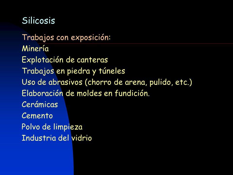 Silicosis Trabajos con exposición: Minería Explotación de canteras Trabajos en piedra y túneles Uso de abrasivos (chorro de arena, pulido, etc.) Elabo