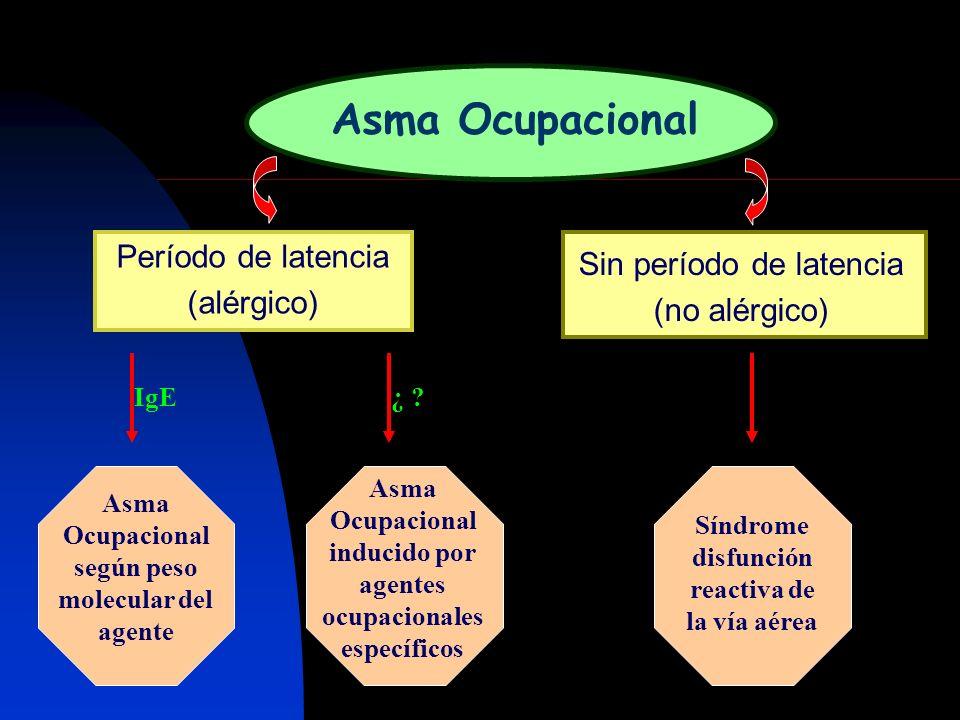 Asma Ocupacional Período de latencia (alérgico) Sin período de latencia (no alérgico) Asma Ocupacional según peso molecular del agente Asma Ocupaciona