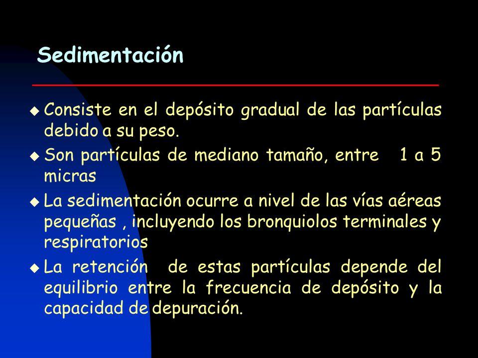 Difusión Es el movimiento al azar de las partículas como consecuencia de su continuo bombardeo por las moléculas del gas.