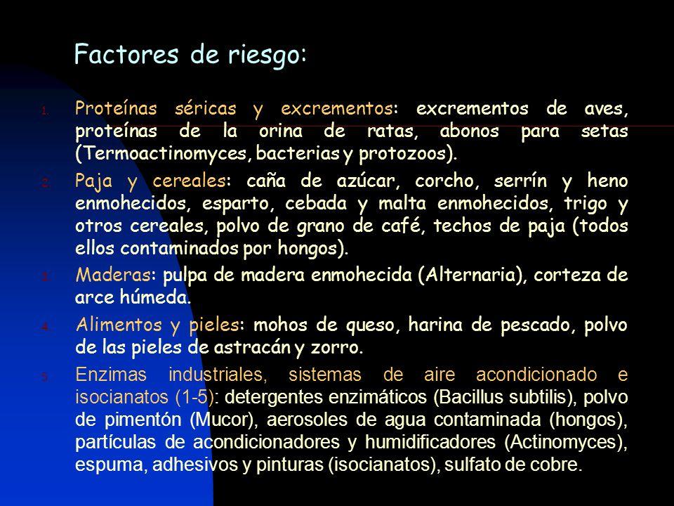 Factores de riesgo: 1. Proteínas séricas y excrementos: excrementos de aves, proteínas de la orina de ratas, abonos para setas (Termoactinomyces, bact