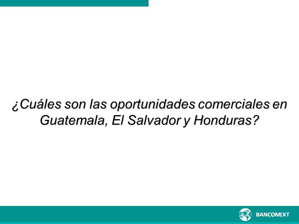 ¿Cuáles son las oportunidades comerciales en Guatemala, El Salvador y Honduras?