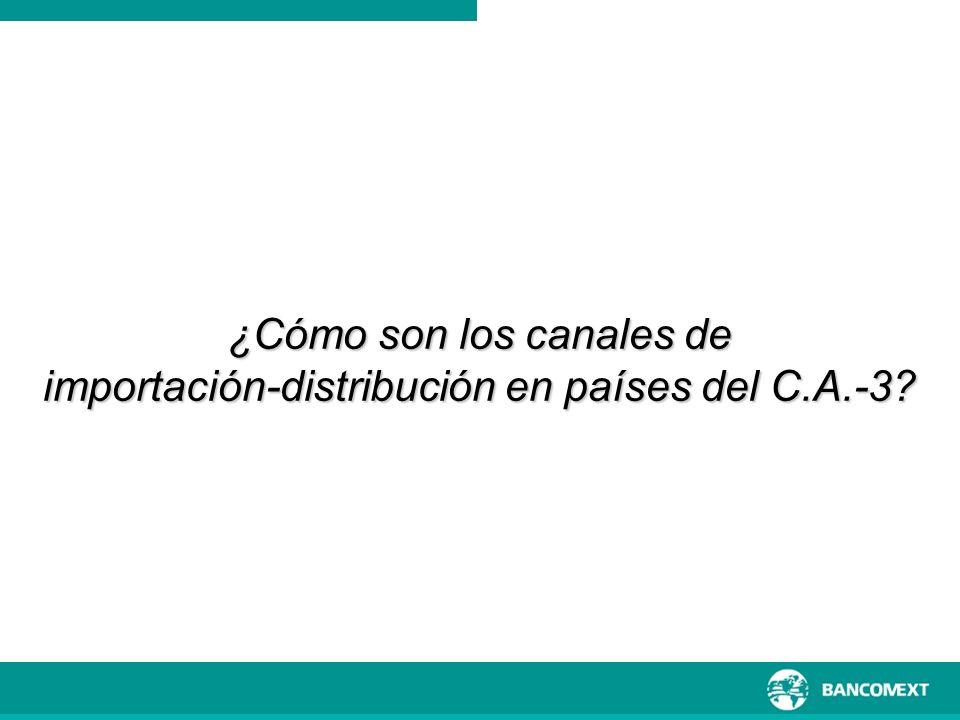 ¿Cómo son los canales de importación-distribución en países del C.A.-3?