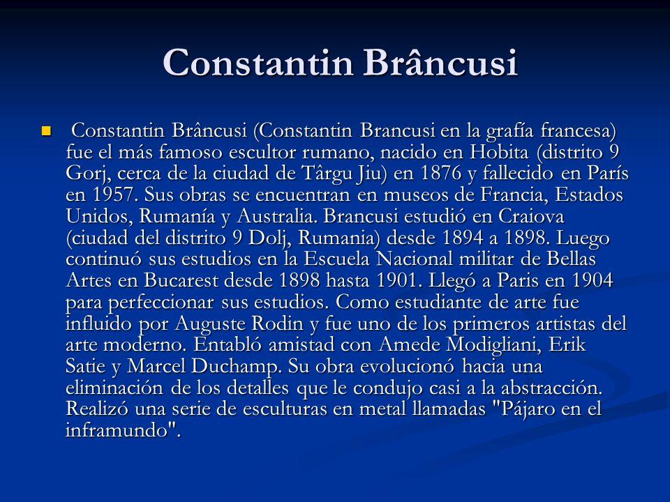 Constantin Brâncusi Constantin Brâncusi Constantin Brâncusi (Constantin Brancusi en la grafía francesa) fue el más famoso escultor rumano, nacido en Hobita (distrito 9 Gorj, cerca de la ciudad de Târgu Jiu) en 1876 y fallecido en París en 1957.