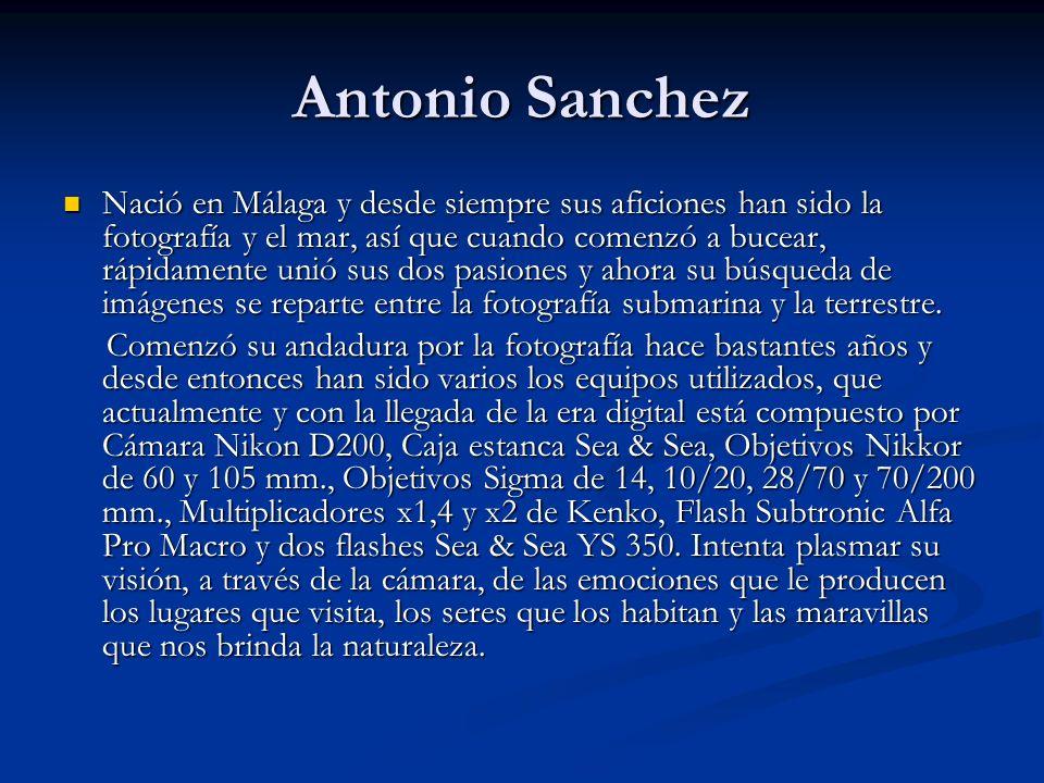 Antonio Sanchez Nació en Málaga y desde siempre sus aficiones han sido la fotografía y el mar, así que cuando comenzó a bucear, rápidamente unió sus dos pasiones y ahora su búsqueda de imágenes se reparte entre la fotografía submarina y la terrestre.