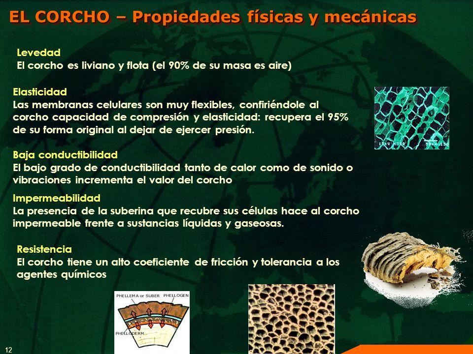 12 EL CORCHO – Propiedades físicas y mecánicas Resistencia El corcho tiene un alto coeficiente de fricción y tolerancia a los agentes químicos Levedad