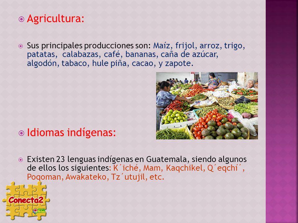 Agricultura: Sus principales producciones son: Maíz, frijol, arroz, trigo, patatas, calabazas, café, bananas, caña de azúcar, algodón, tabaco, hule pi