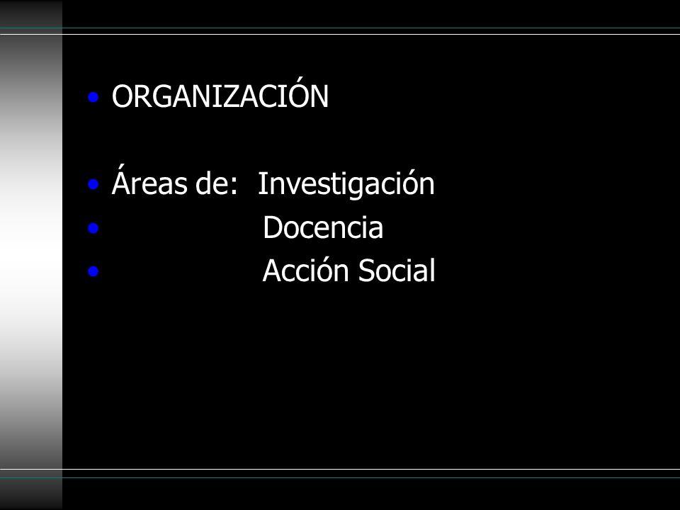 ORGANIZACIÓN Áreas de: Investigación Docencia Acción Social