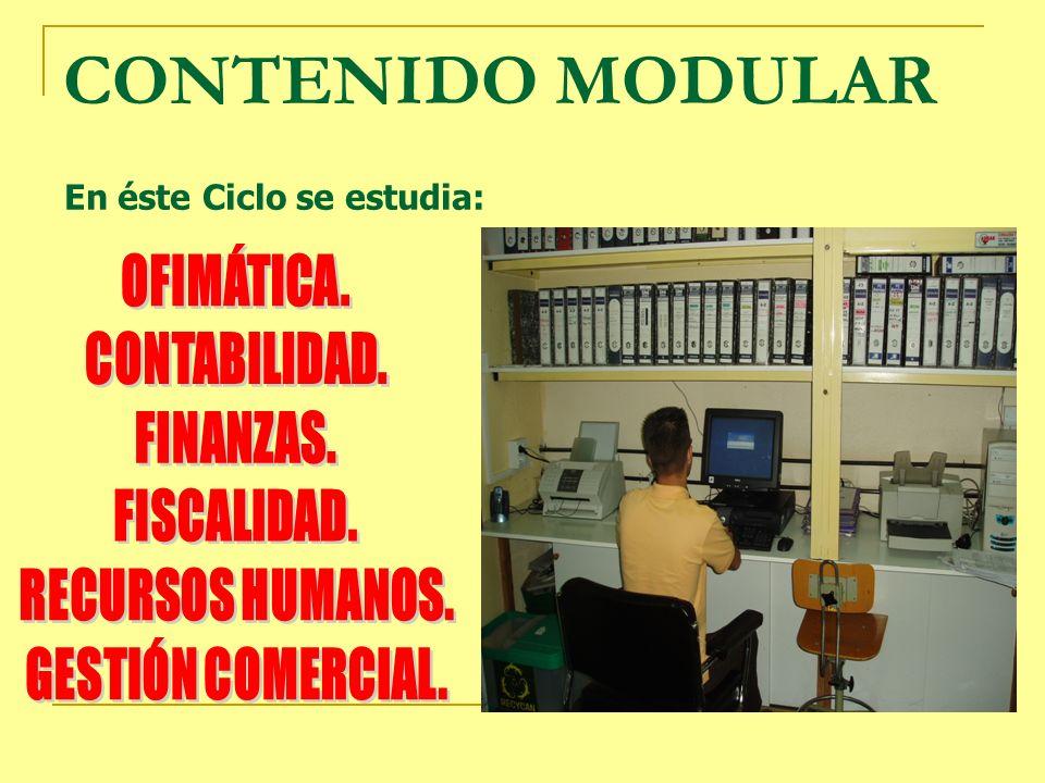 En éste Ciclo se estudia: CONTENIDO MODULAR