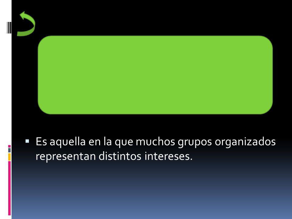 Es aquella en la que muchos grupos organizados representan distintos intereses.