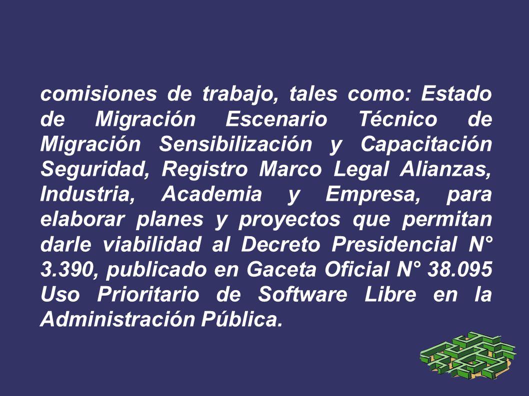 comisiones de trabajo, tales como: Estado de Migración Escenario Técnico de Migración Sensibilización y Capacitación Seguridad, Registro Marco Legal A
