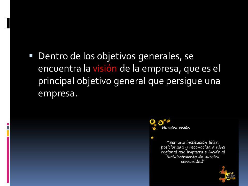 Dentro de los objetivos generales, se encuentra la visión de la empresa, que es el principal objetivo general que persigue una empresa.