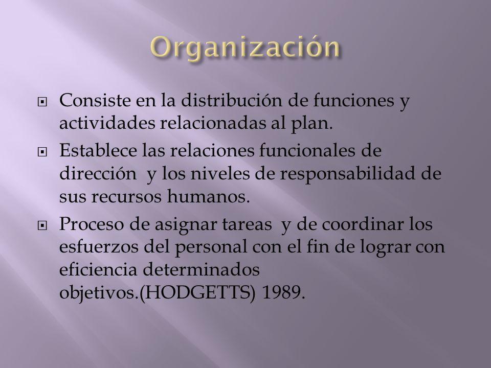 Consiste en la distribución de funciones y actividades relacionadas al plan. Establece las relaciones funcionales de dirección y los niveles de respon