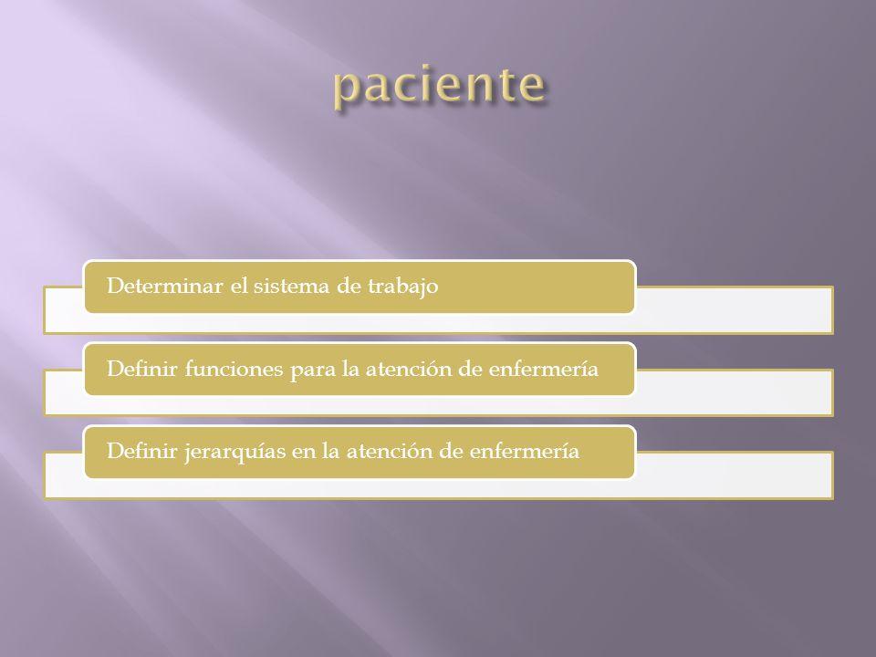 Determinar el sistema de trabajoDefinir funciones para la atención de enfermeríaDefinir jerarquías en la atención de enfermería