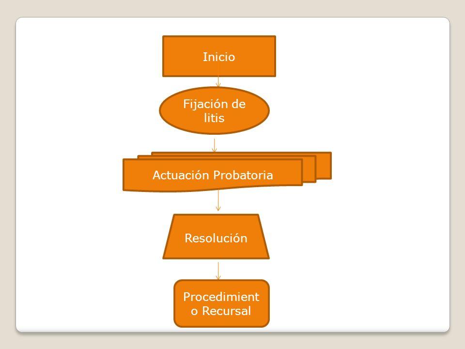 Inicio Fijación de litis Actuación Probatoria Resolución Procedimient o Recursal