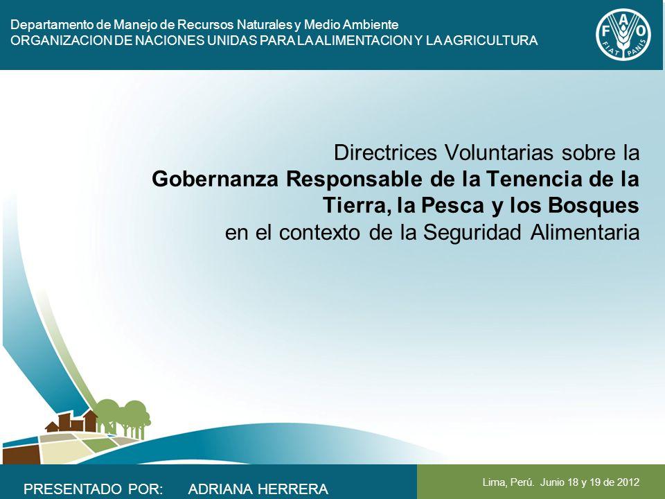 Departamento de Manejo de Recursos Naturales y Medio Ambiente ORGANIZACION DE NACIONES UNIDAS PARA LA ALIMENTACION Y LA AGRICULTURA Lima, Perú. Junio