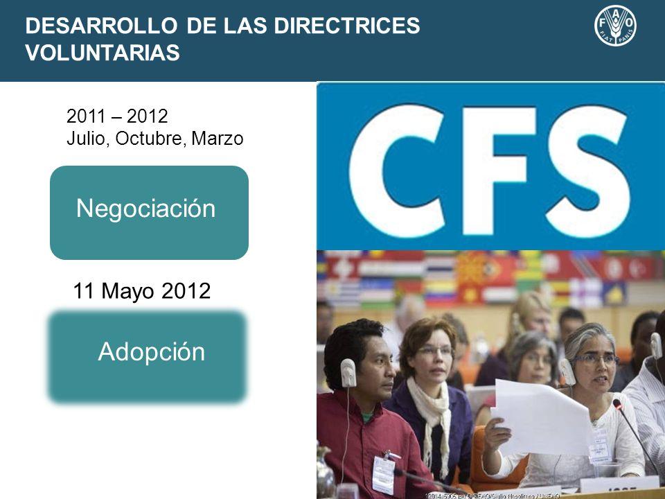 DESARROLLO DE LAS DIRECTRICES VOLUNTARIAS 2011 – 2012 Julio, Octubre, Marzo Negociación Adopción 11 Mayo 2012