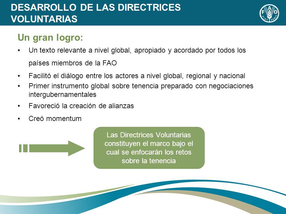 DESARROLLO DE LAS DIRECTRICES VOLUNTARIAS Un gran logro: Un texto relevante a nivel global, apropiado y acordado por todos los países miembros de la F