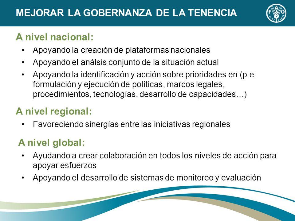 A nivel nacional: Apoyando la creación de plataformas nacionales Apoyando el análsis conjunto de la situación actual Apoyando la identificación y acci