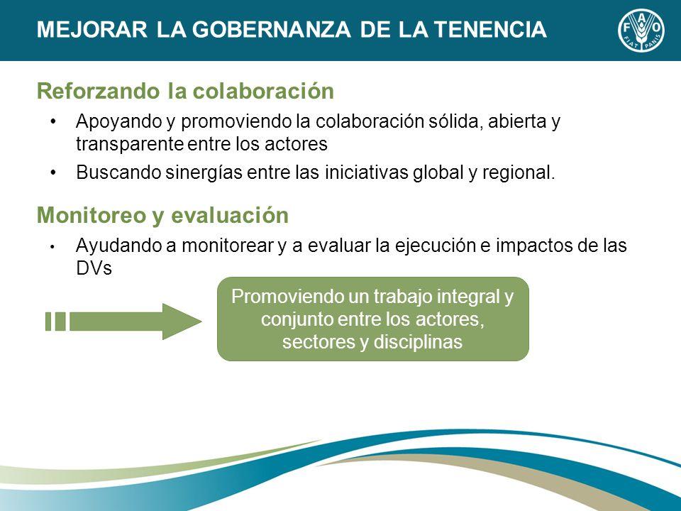 MEJORAR LA GOBERNANZA DE LA TENENCIA Reforzando la colaboración Apoyando y promoviendo la colaboración sólida, abierta y transparente entre los actore