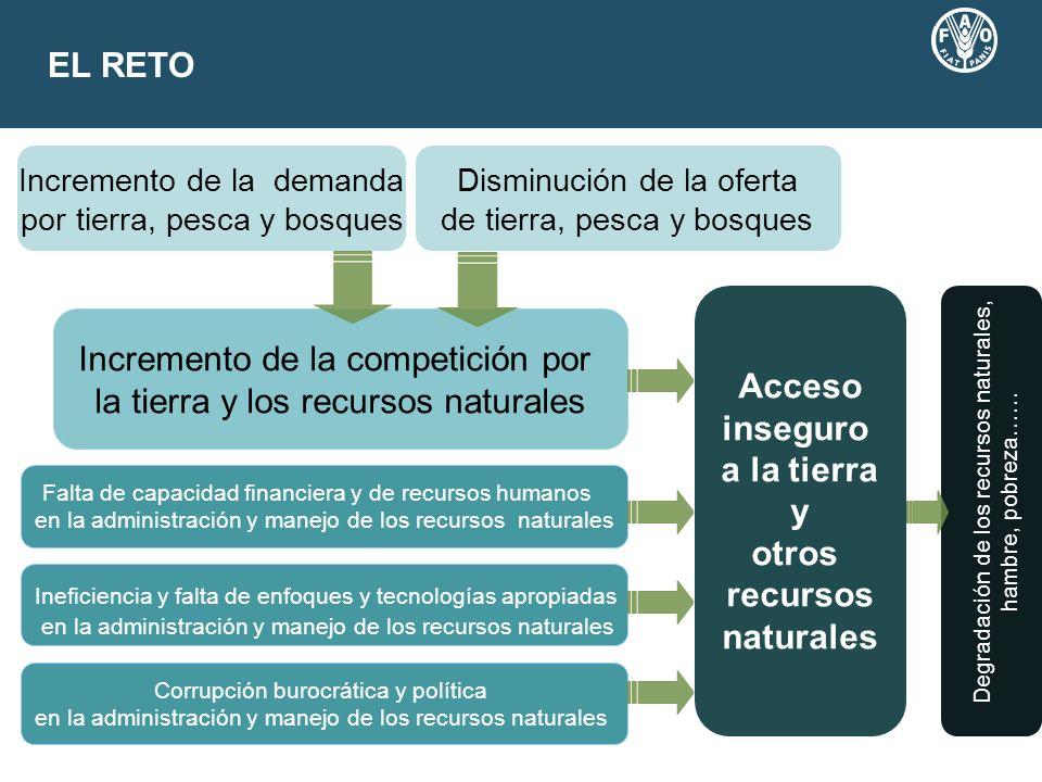 EL RETO Incremento de la competición por la tierra y los recursos naturales Incremento de la demanda por tierra, pesca y bosques Disminución de la ofe